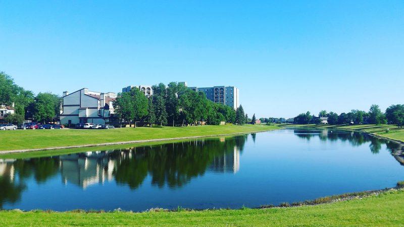 Parki i zieleń miejska - warsztaty dla dzieci i młodzieży