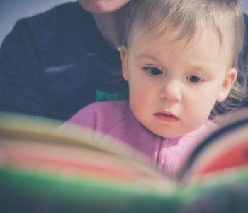 Klub Małego Czytelnika - Pory roku
