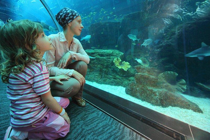akwarium morskie dzieci