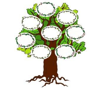 Drzewo genealogiczne do druku