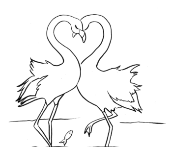 Zakochane flamingi - kolorowanka kolorowanki i szablony do druku dla dzieci MiastoDzieci.pl