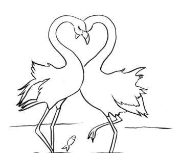 Zakochane flamingi