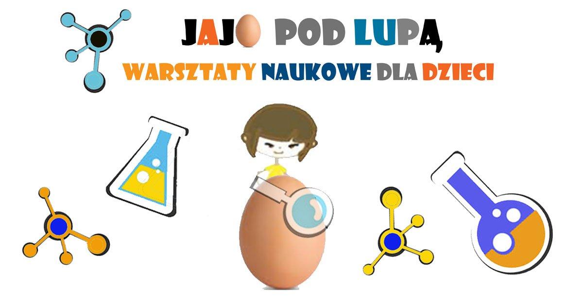 Jajo pod lupą - warsztaty przyrodnicze