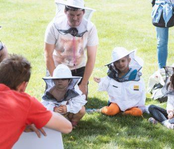 Tajemnice pszczelego ula – warsztaty dla rodzin z dziećmi. Katowice