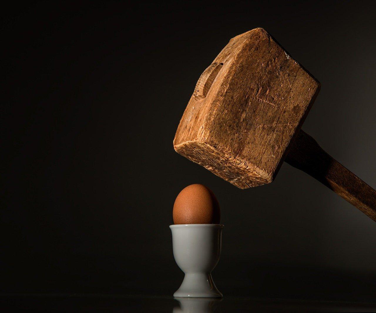 Mali Einsteini: Eksperymenty z jajem