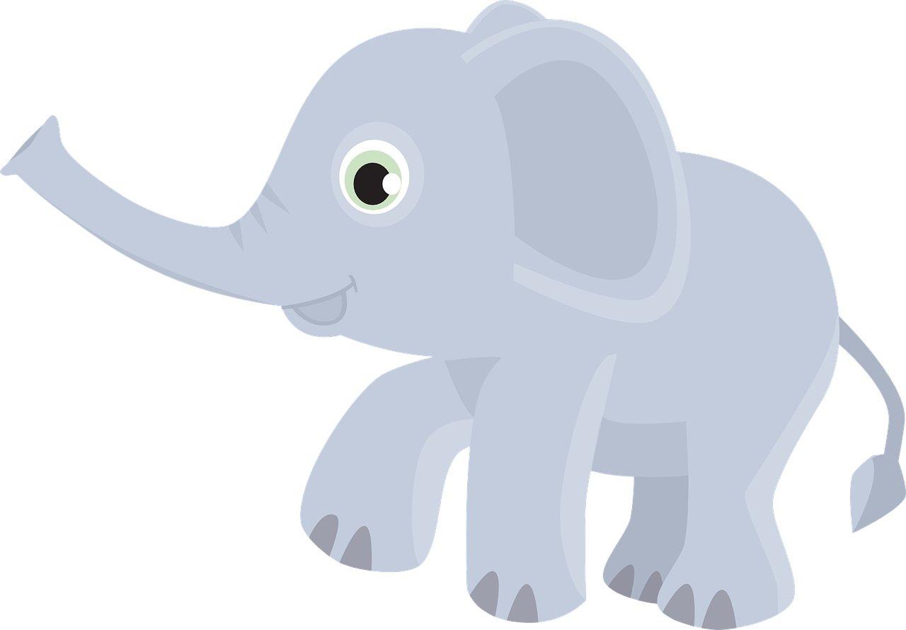 Słoń na płocie śmieszne zagadki o zwierzętach
