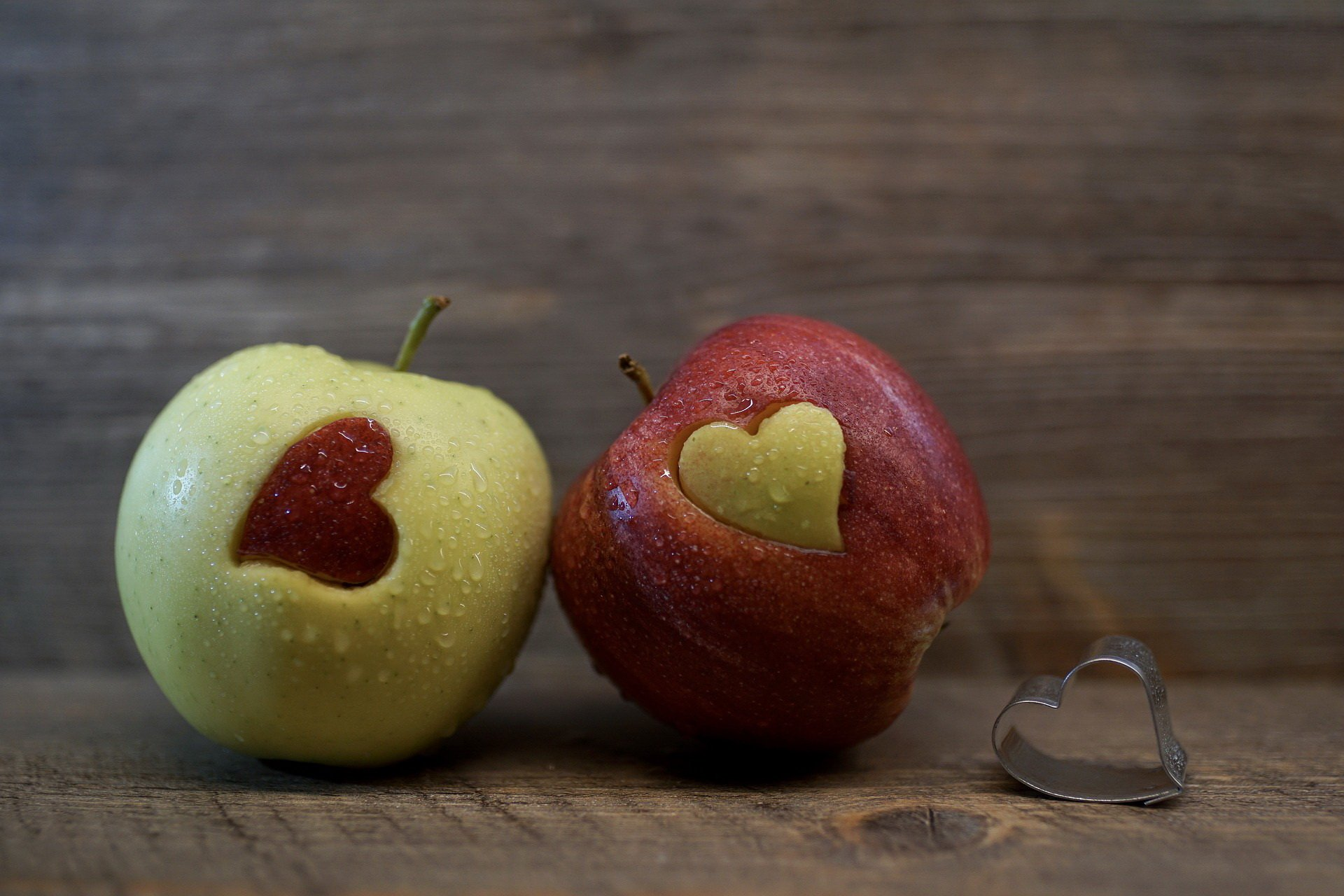 Zagadki dla dzieci z odpowiedziami owoce i warzywa