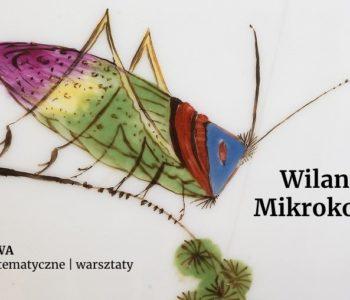 Wilanowski mikrokosmos – wystawa ceramiki z przedstawieniami owadów