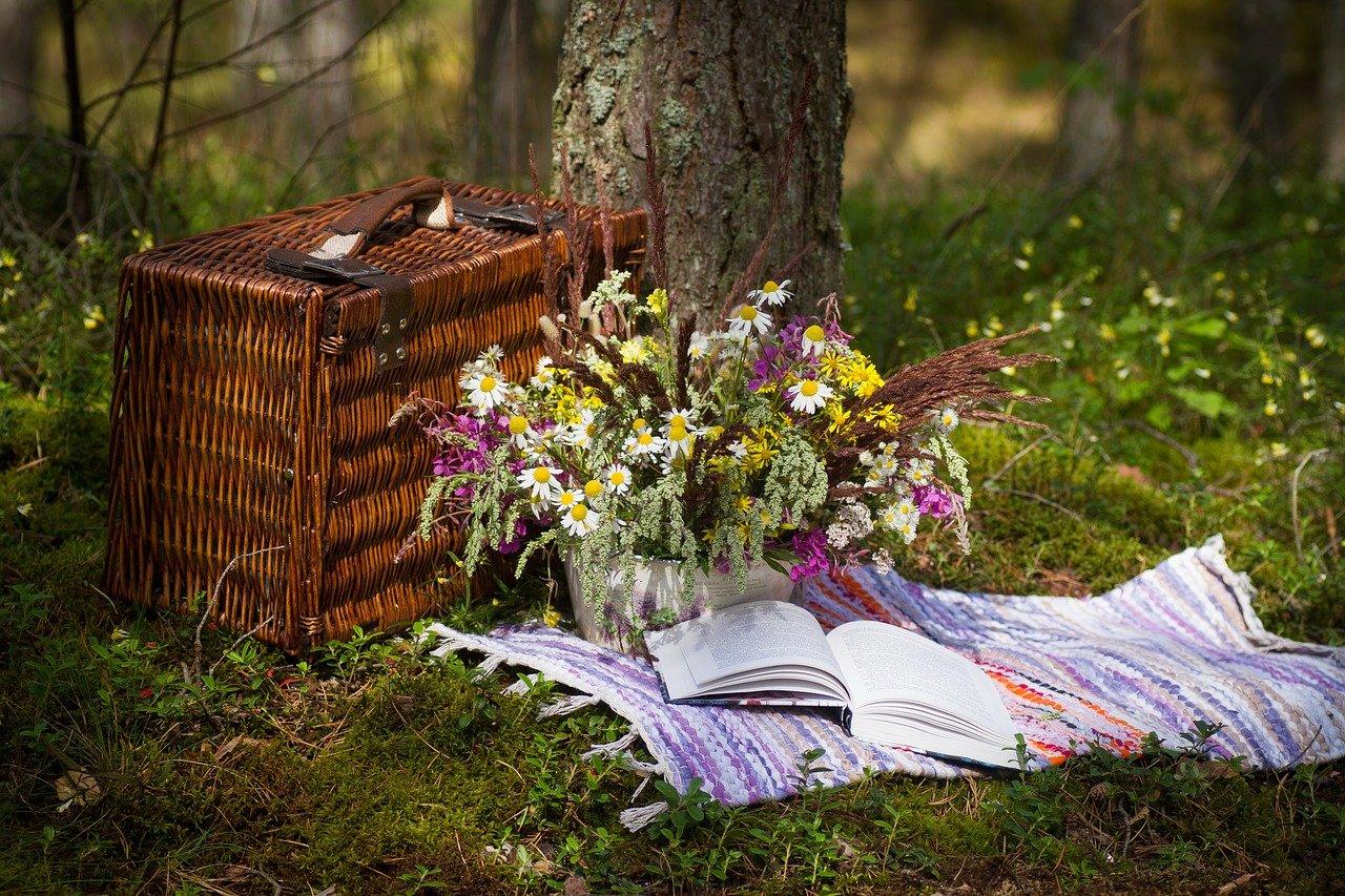 Piknik Osiedlowy