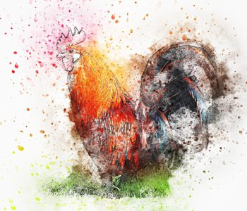 Bajka na dobranoc– O tym, jak kura Pelagia wysiedziała smoka