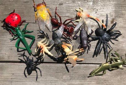 plastikowe robaki