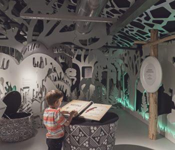 Lato w Muzeum: Życie na pięciu kontynentach. Katowice