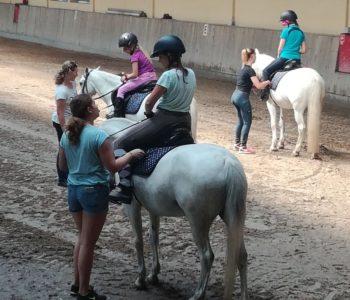 Półkolonie jeździeckie