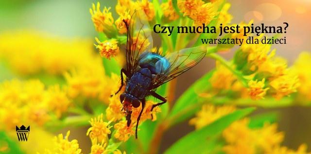 Czy mucha jest piękna? Warsztaty plastyczno-przyrodnicze dla dzieci