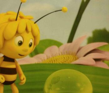 Pszczółka Maja – Pierwszy lot