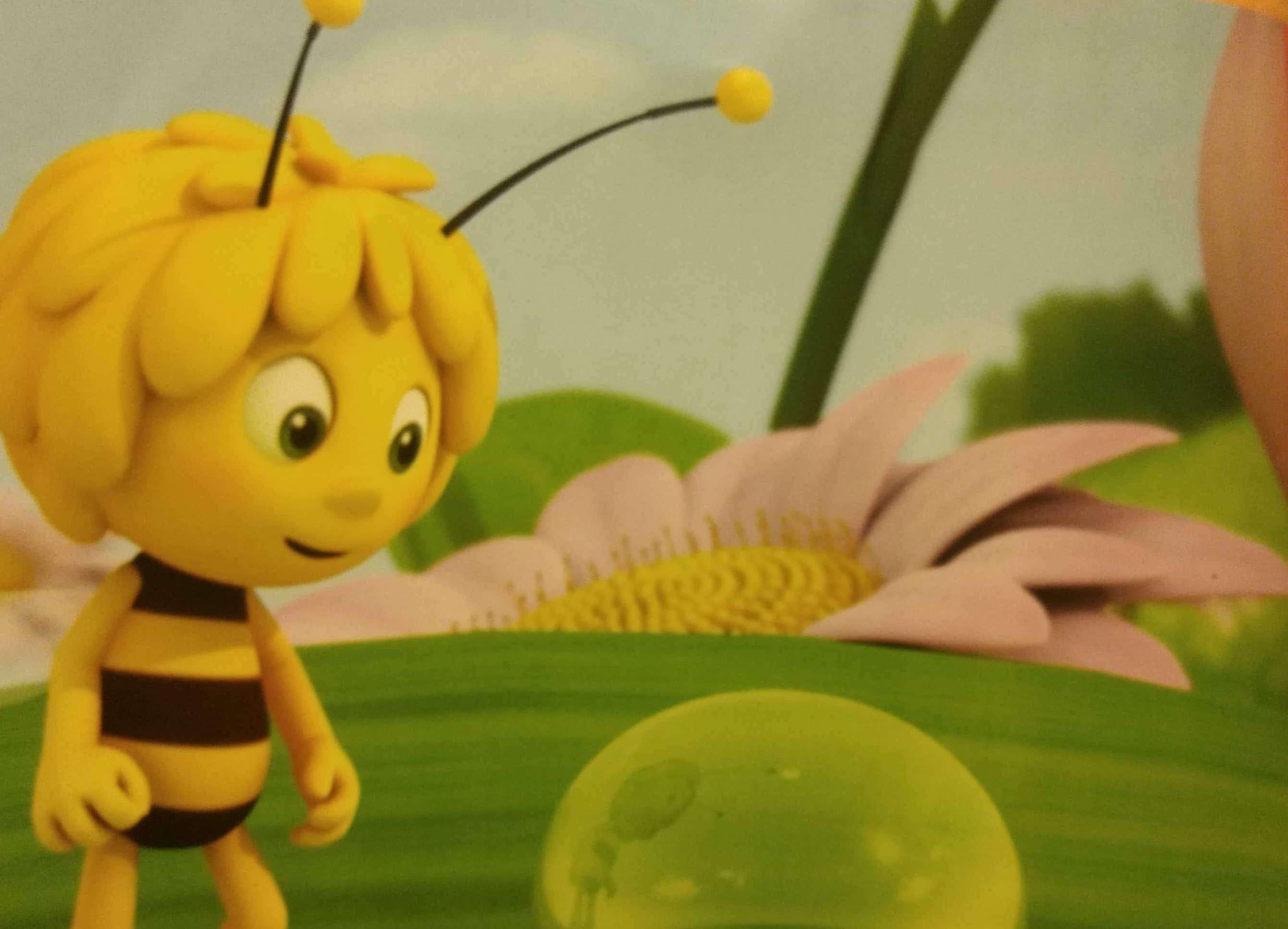 Pszczółka Maja i kropla rosy
