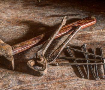 Zwierzęta z drewna – warsztaty stolarskie