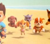 Psi Patrol na plaży