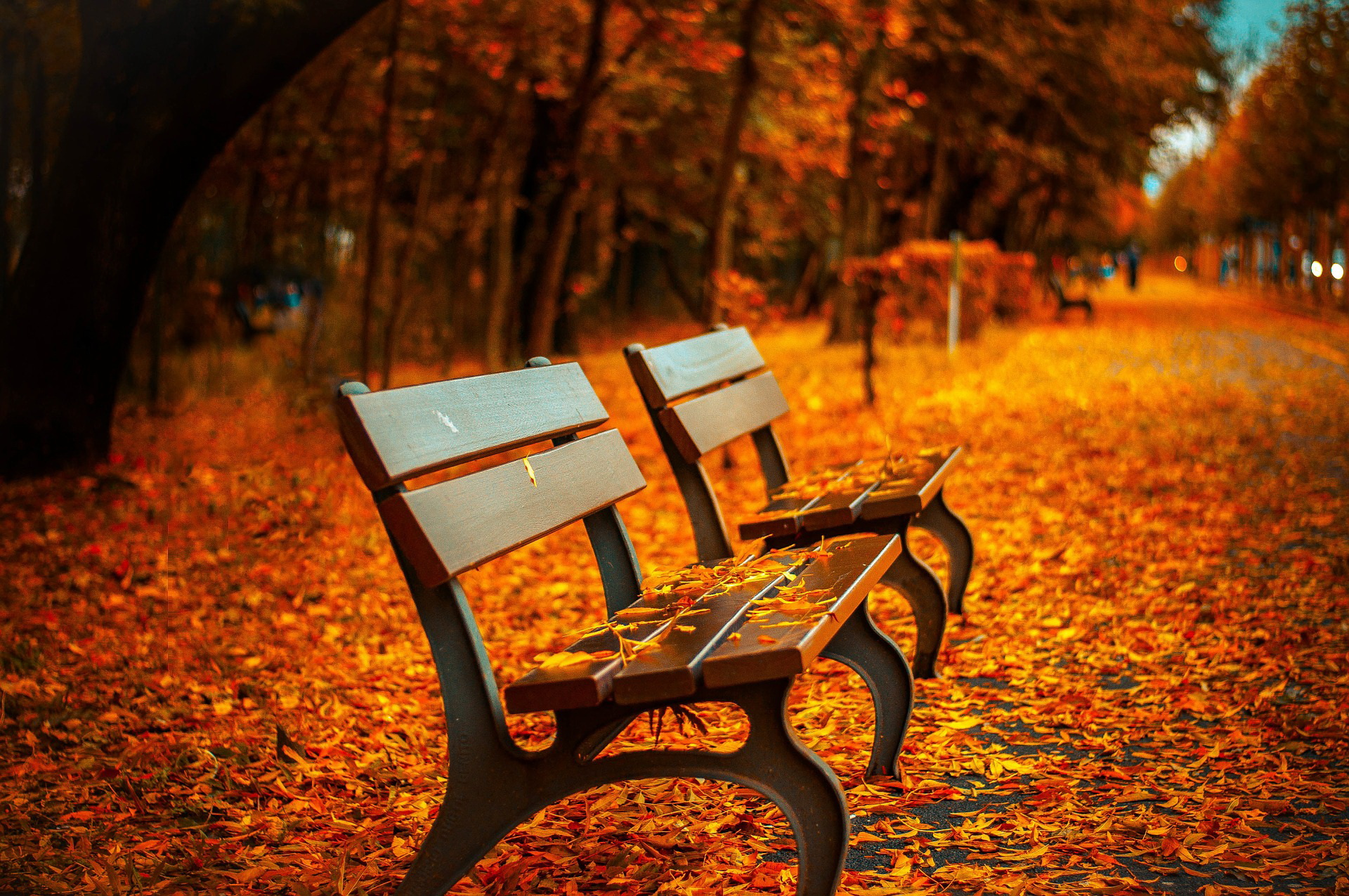 zagadka o jesieni dla dzieci pory roku