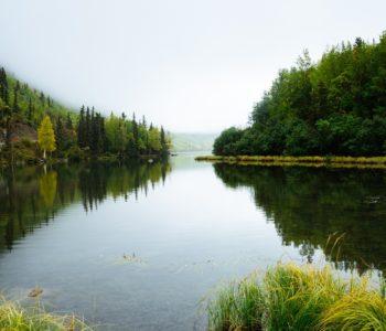 Kocury Natury - warsztaty ekologiczne
