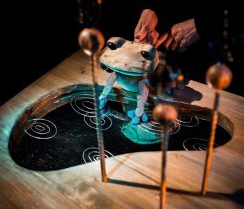 Dom Kultury Chwałowice: Pomelo jest zakochany… w żabie, deszczu i nie tylko
