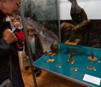 Parki Krajobrazowe Województwa Śląskiego – przyroda, kultura, krajobraz. Warsztaty przyrodnicze. Bytom