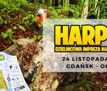 Harpuś – z mapą w Oliwie na Pachołku