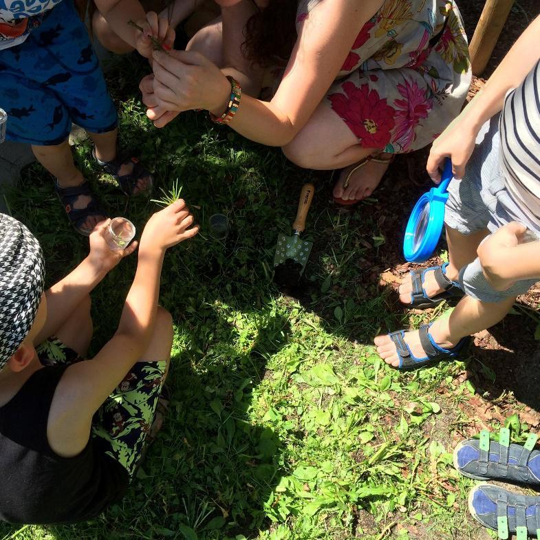 Eko-historie: Tajemnicze ślady pod korą, czy wszystkie są dziełem kornika?