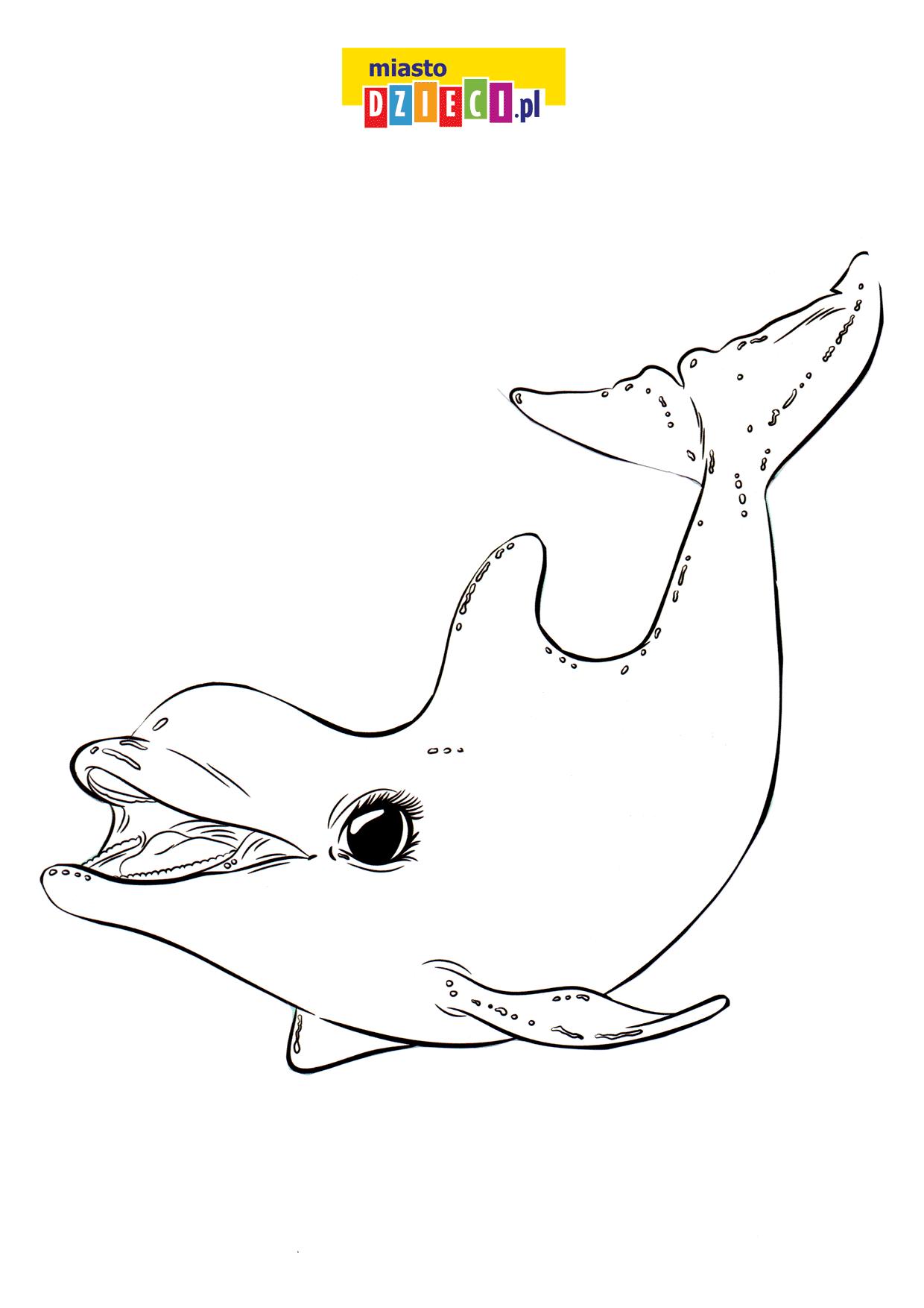 delfinek - kolorowanka