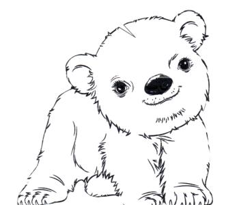 kolorowanka - niedźwiadek