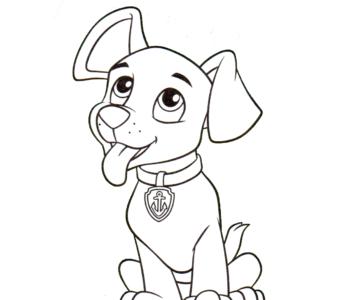 szczeniaczek psi patrol kolorowanka do druku