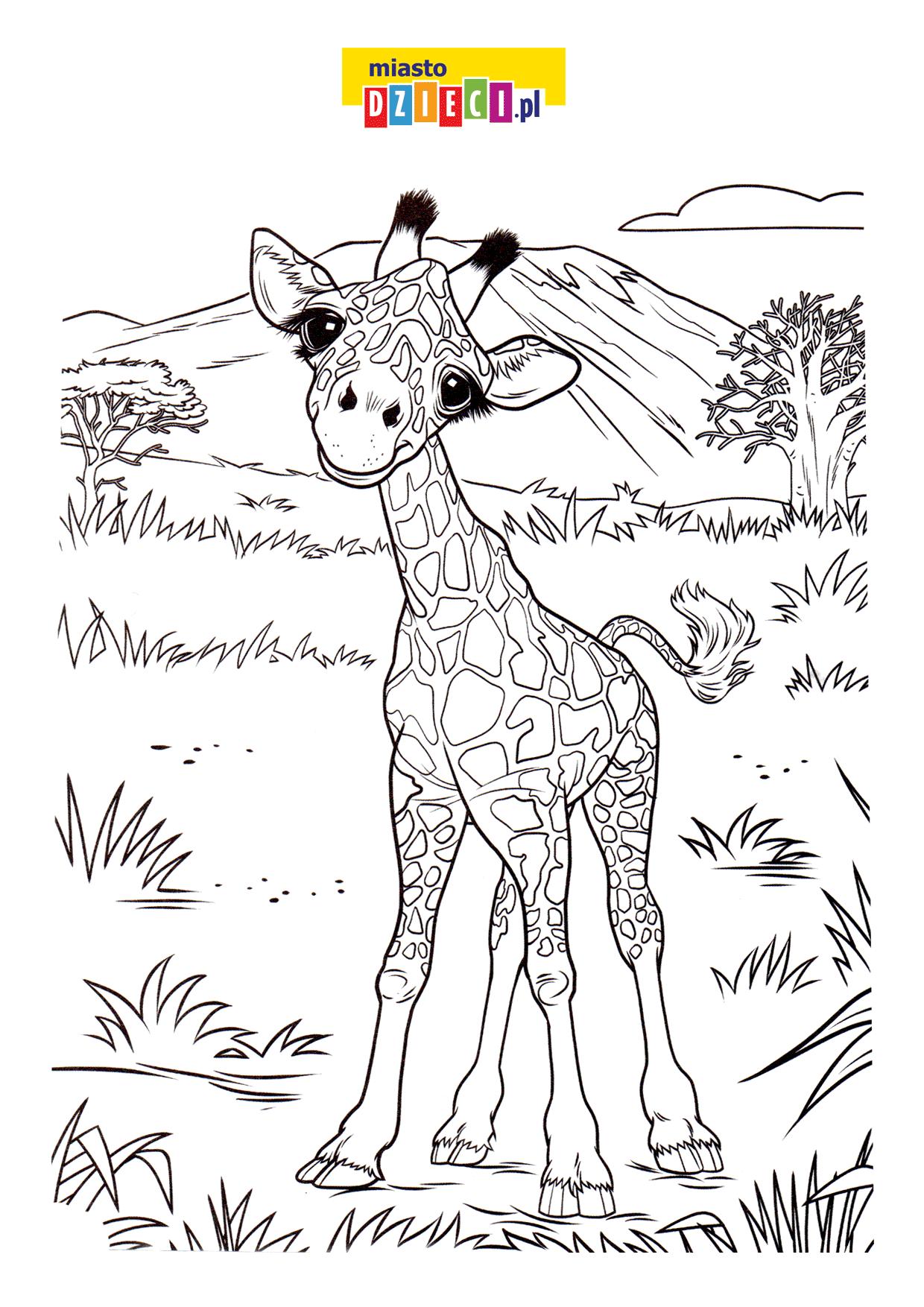 Mała żyrafa Bezpłatna Kolorowanka Do Druku Dla Dzieci