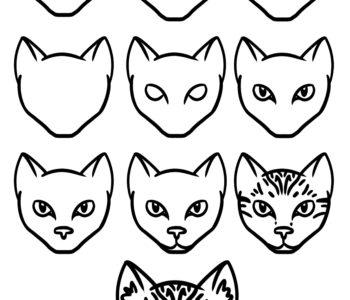 jak narysować głowę kota krok po kroku szablony rysowania do druku