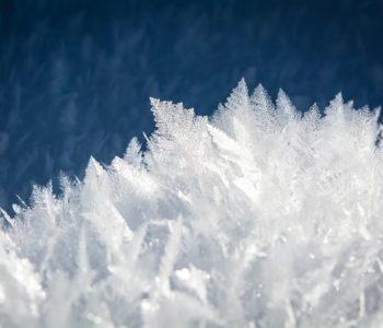 Leniwa niedziela: Poszukiwania zimy