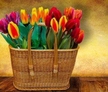 Życzenia dla babci i dziadka, wierszyki na Dzień Babci i Dziadka