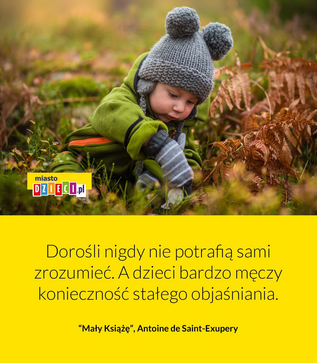 Dorośli nie potrafią najpiękniejsze cytaty Mały Książę