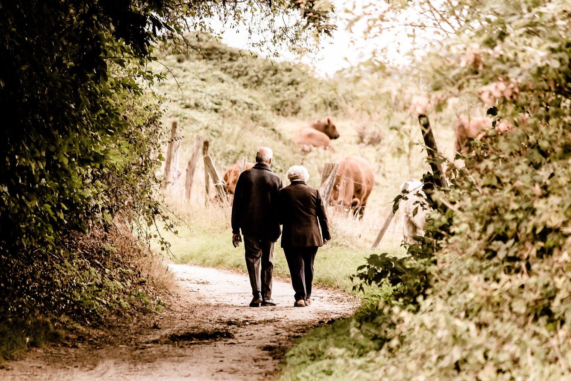 dedykacja dla babci i dziadka, życzenia na Dzień Babci i Dziadka