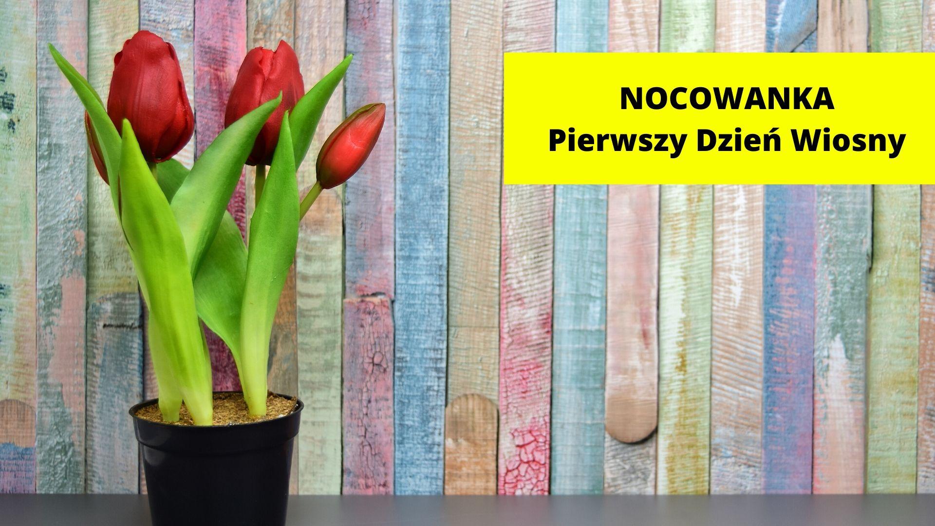 Nocowanka - na I Dzień Wiosny