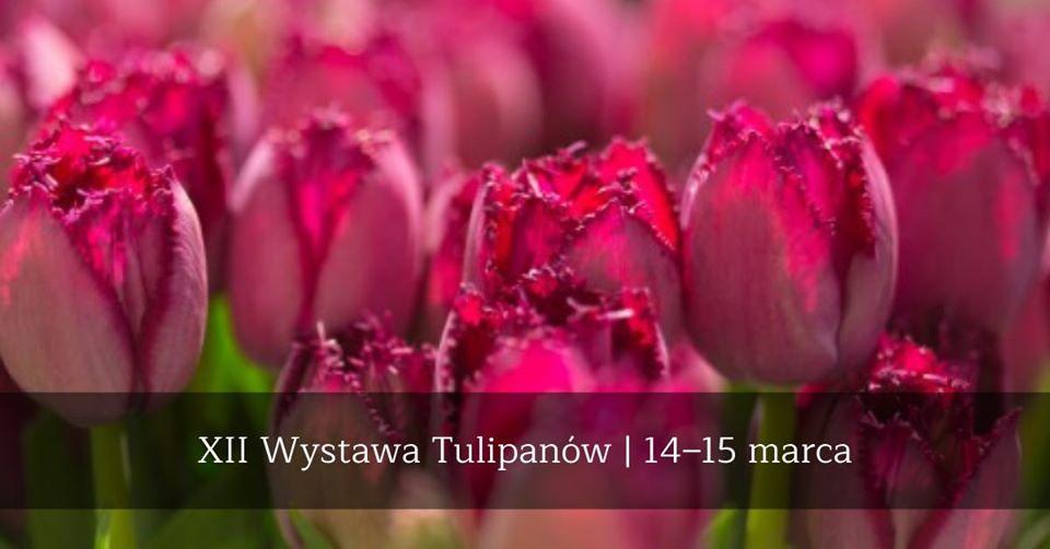 XII Wystawa Tulipanów - kiermasz, wykłady, warsztaty