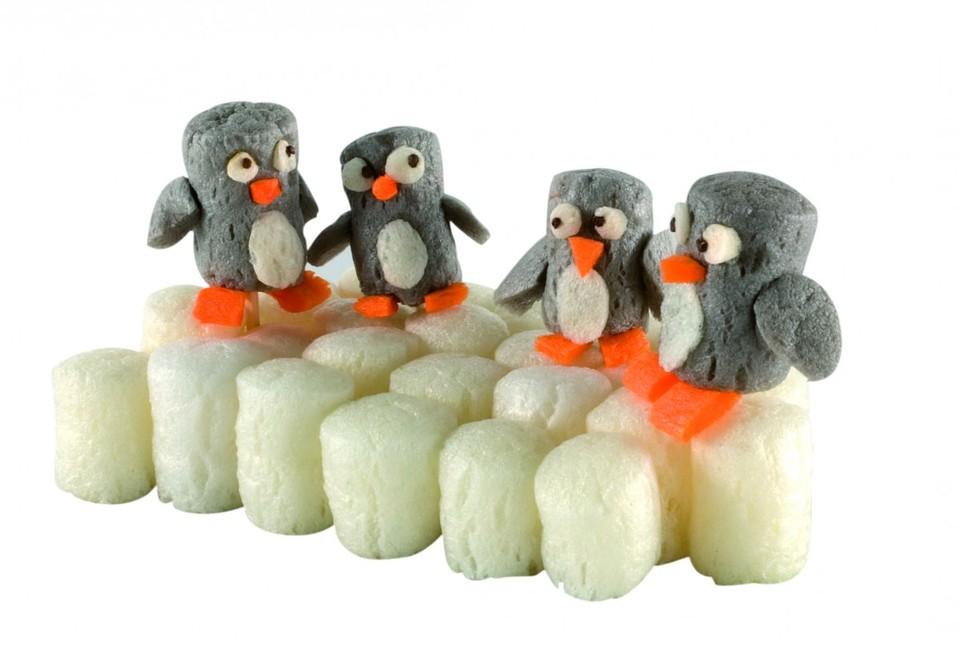 Strefa zabawy: Na Antarktydzie u pingwinów