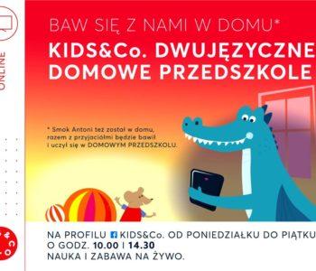 Dwujęzyczne Domowe Przedszkole KIDS&Co - zajęcia online