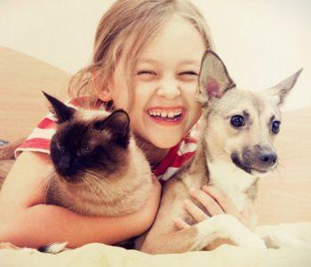 Czy zwierzęta domowe zagrażają rodzinie? Zwierzęta a koronawirus
