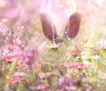 ładne życzenia wielkanocne dla dzieci, piosenki i wiersze na Wielkanoc