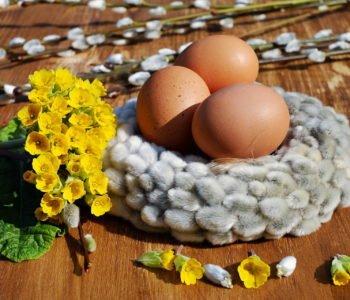 Życzenia Wielkanoc wierszyki i piosenki wielkanocne dla dzieci