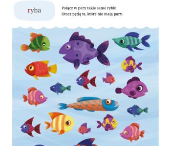 Nauka liter karta pracy do druku. Materiały edukacyjne do pobrania dla dzieci