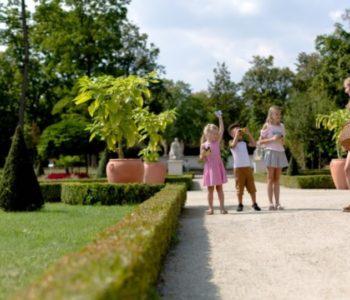 Kameralne spacery parkowe dla grup w Muzeum w Wilanowie