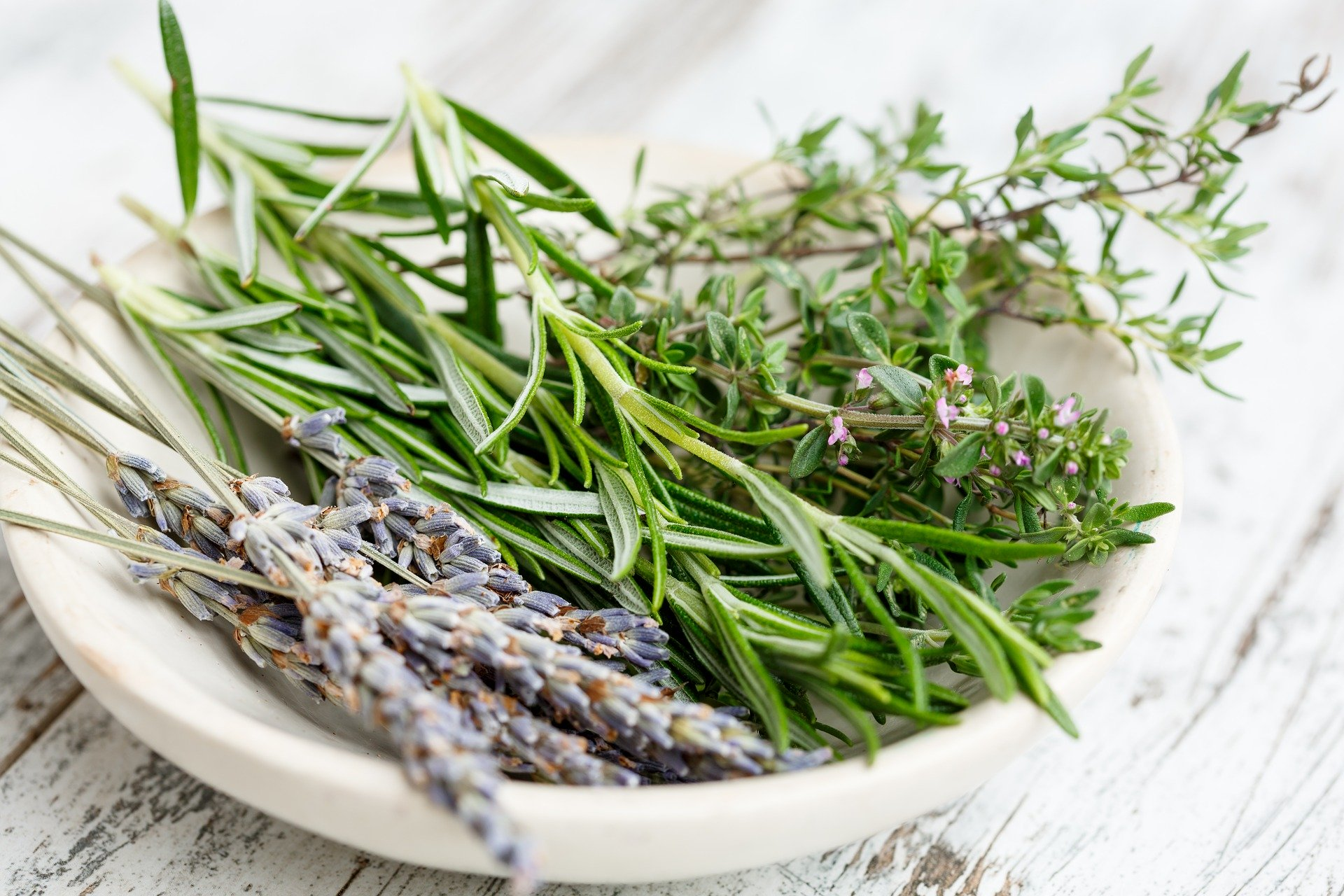 herbs-2523119_1920