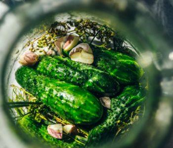 Warsztaty kulinarne: kiszonki i przetwory