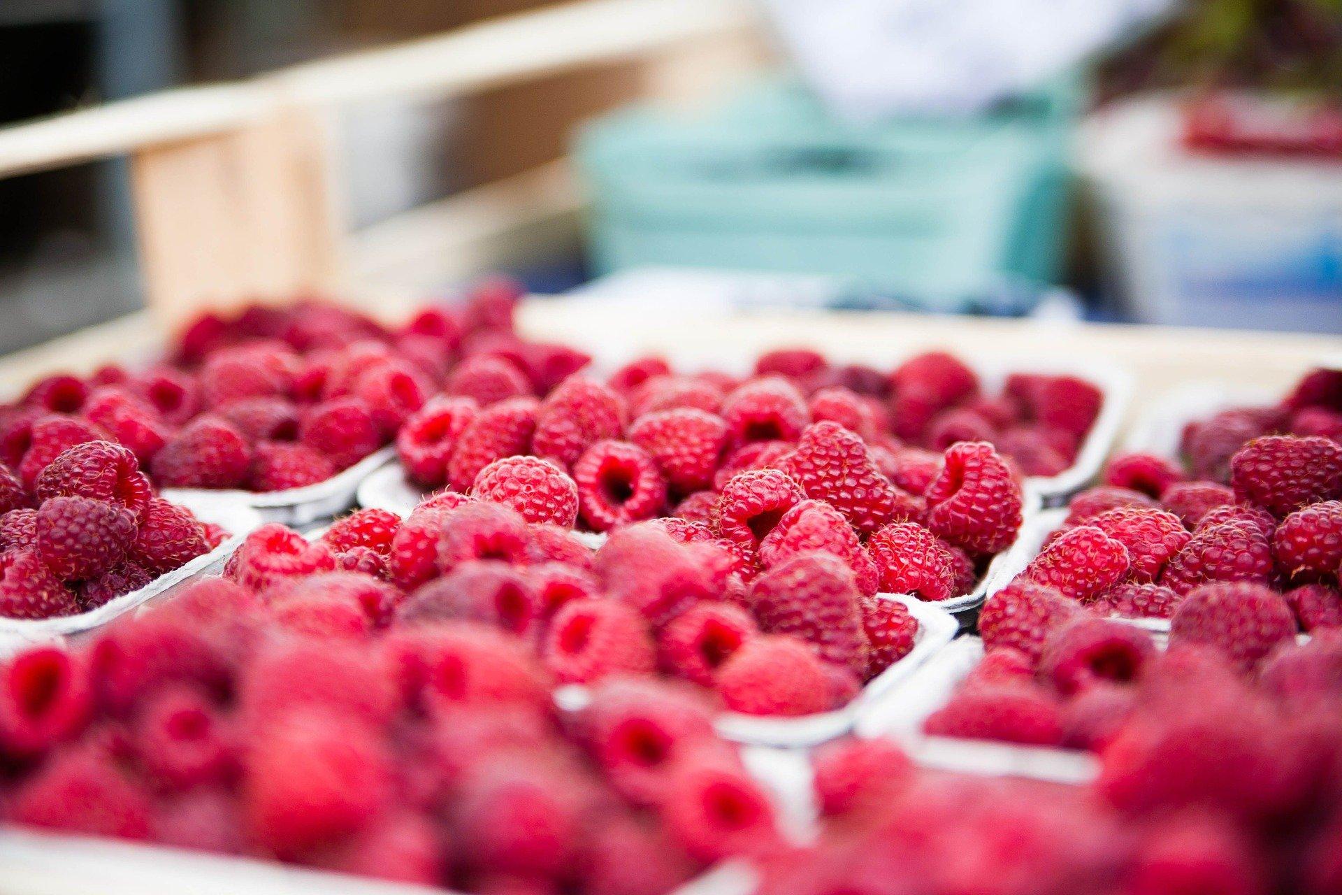 raspberries-422979_1920