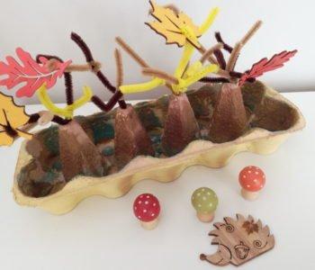 Co zrobić z pudełka po jajkach? 4 pory roku w lesie!